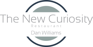 The-New-Curiosity-Dan-Williams